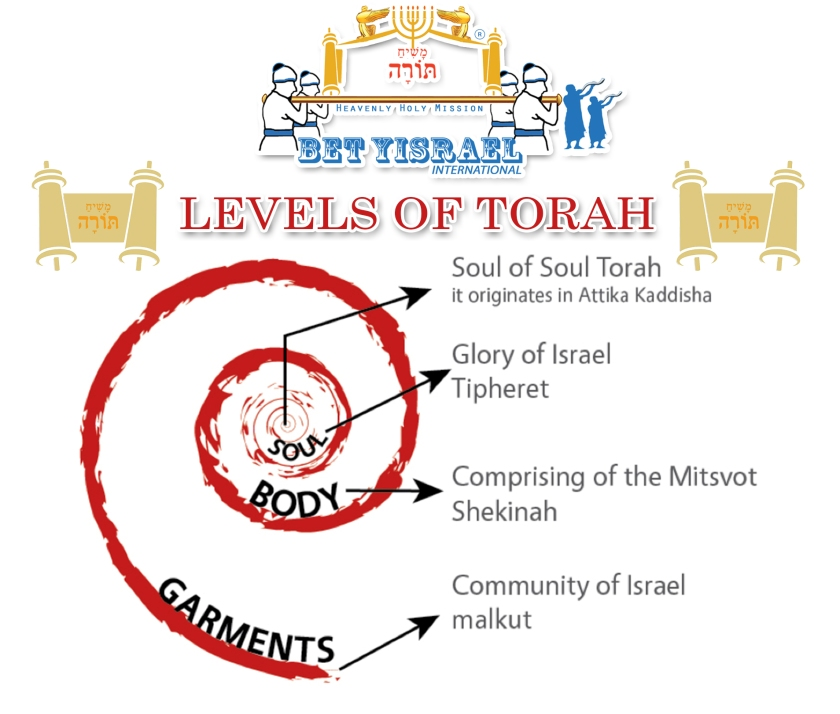Levels of Torah3