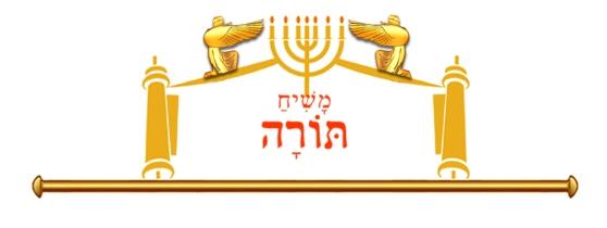 12 X 5 size with Mashiach torah1