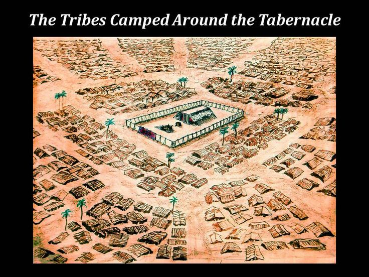 12tribes